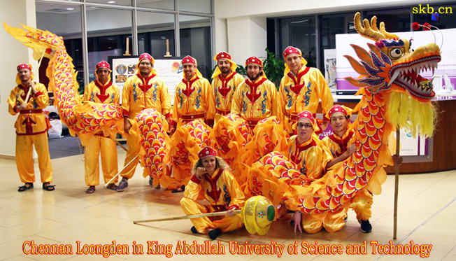 Chinese Dragon Dance and Lion Dance Purchase Loong Equipment North ...